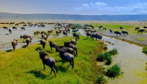 Attractions in Ngorongoro Conservation Area