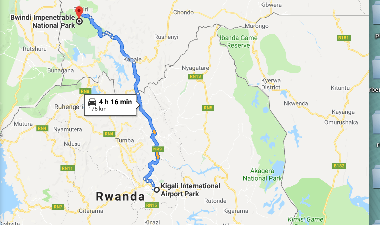 2 Days Uganda gorilla trip from Kigali