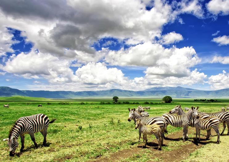 3 Days Ngorongoro Conservation area