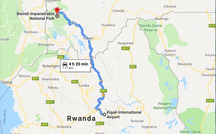 1 Day Uganda Gorilla Trip from Kigali