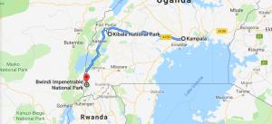 5 Days Uganda chimp & Gorilla safari