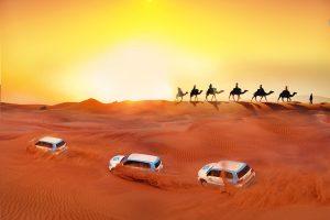 Dubai safaris