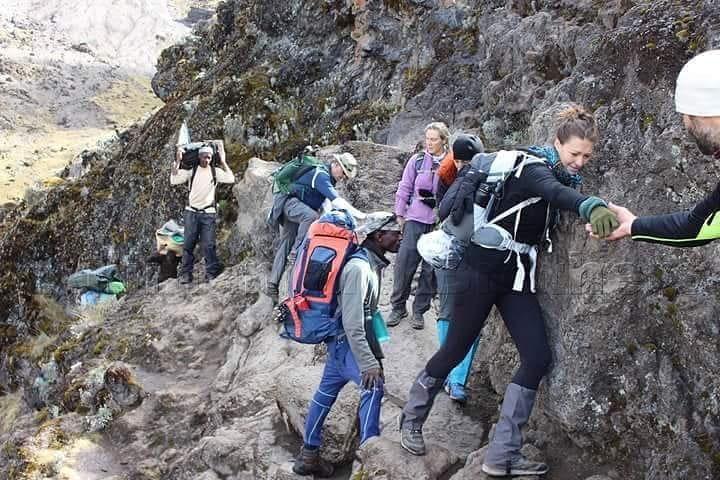 Mount Rwenzori hiking tours